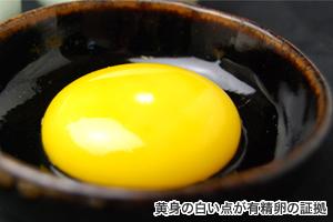 卵黄の大きな有精卵「青玉」だけを使用