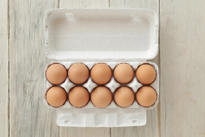 東北牧場の卵「赤玉」(10個入り)エコ包装