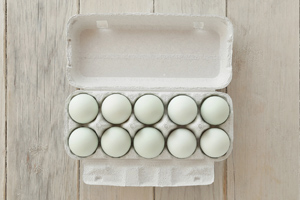 東北牧場の卵「青玉」(10個入り)エコ包装