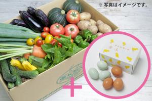 野菜の日セット内容