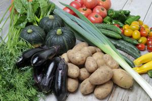 東北牧場の野菜は無農薬・無化学肥料